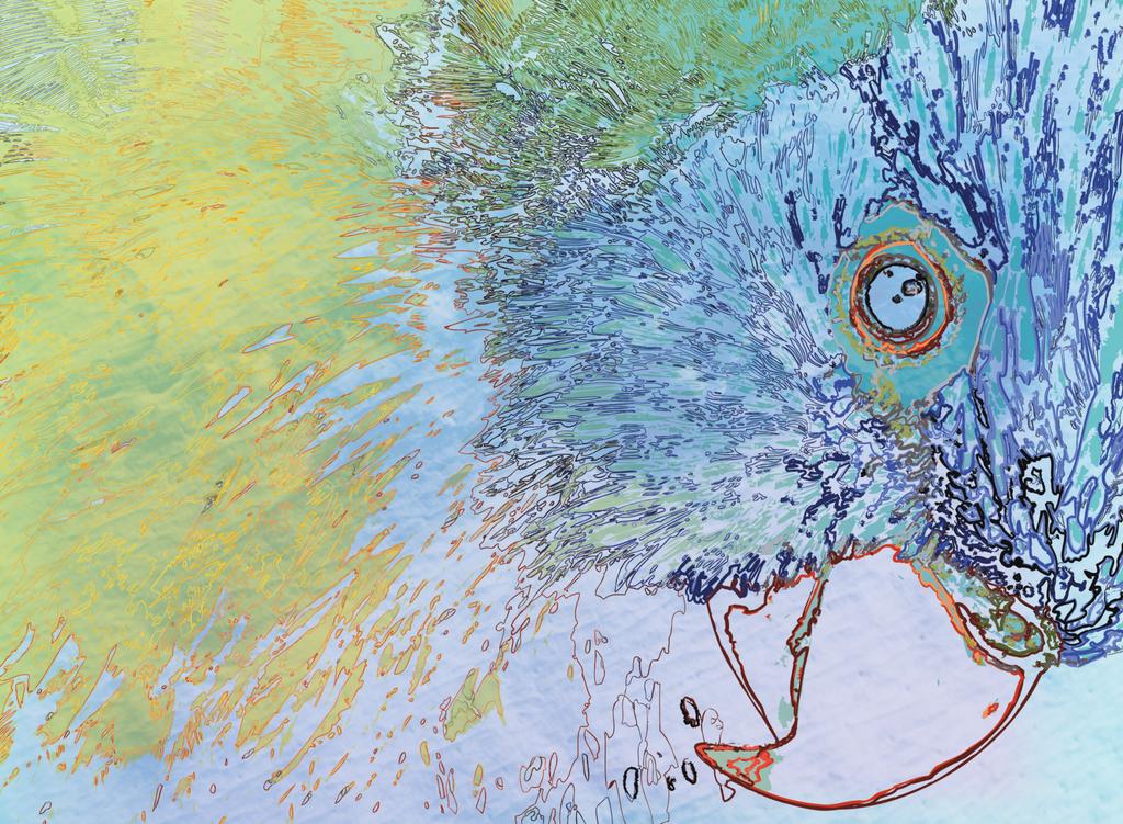 Parrot by erikfoxjackson