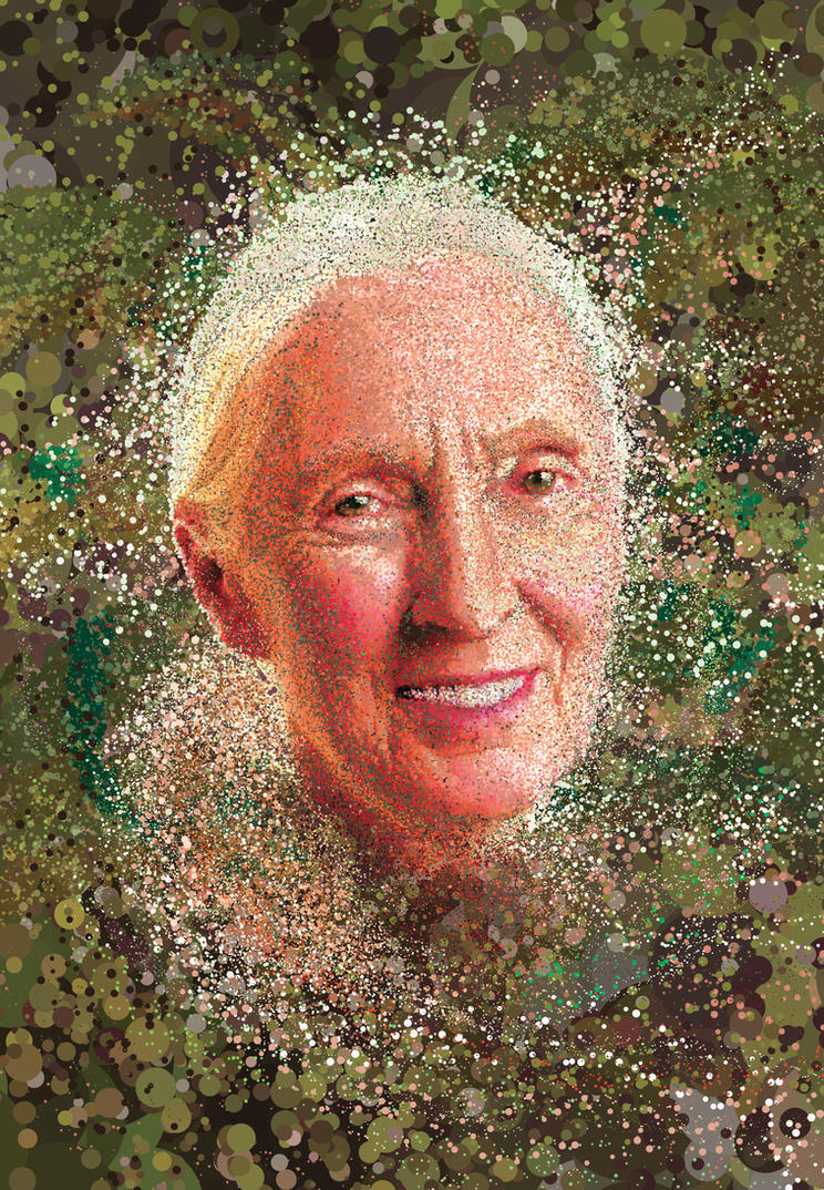 Jane Goodall by erikfoxjackson
