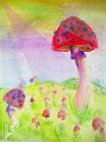 Shrooms field by LFcorp
