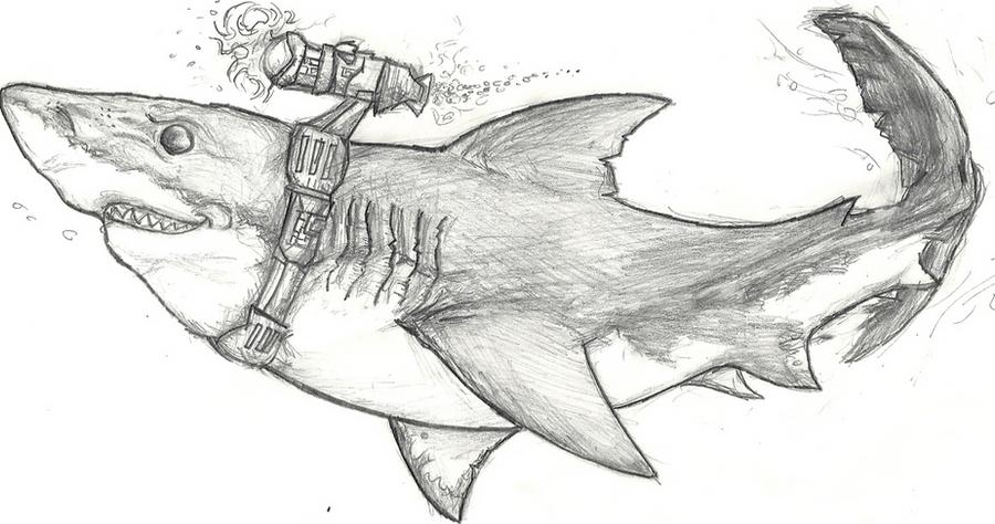 Realistic Shark Drawing Laser shark by cross-bluefoxRealistic Shark Drawing
