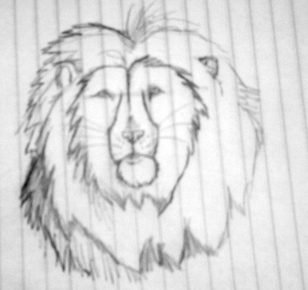 untitled lion by ladylysander