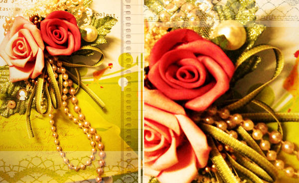 rose_bloom_vintage by quicaphony
