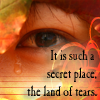 Land of Tears icon by zephyrofgod