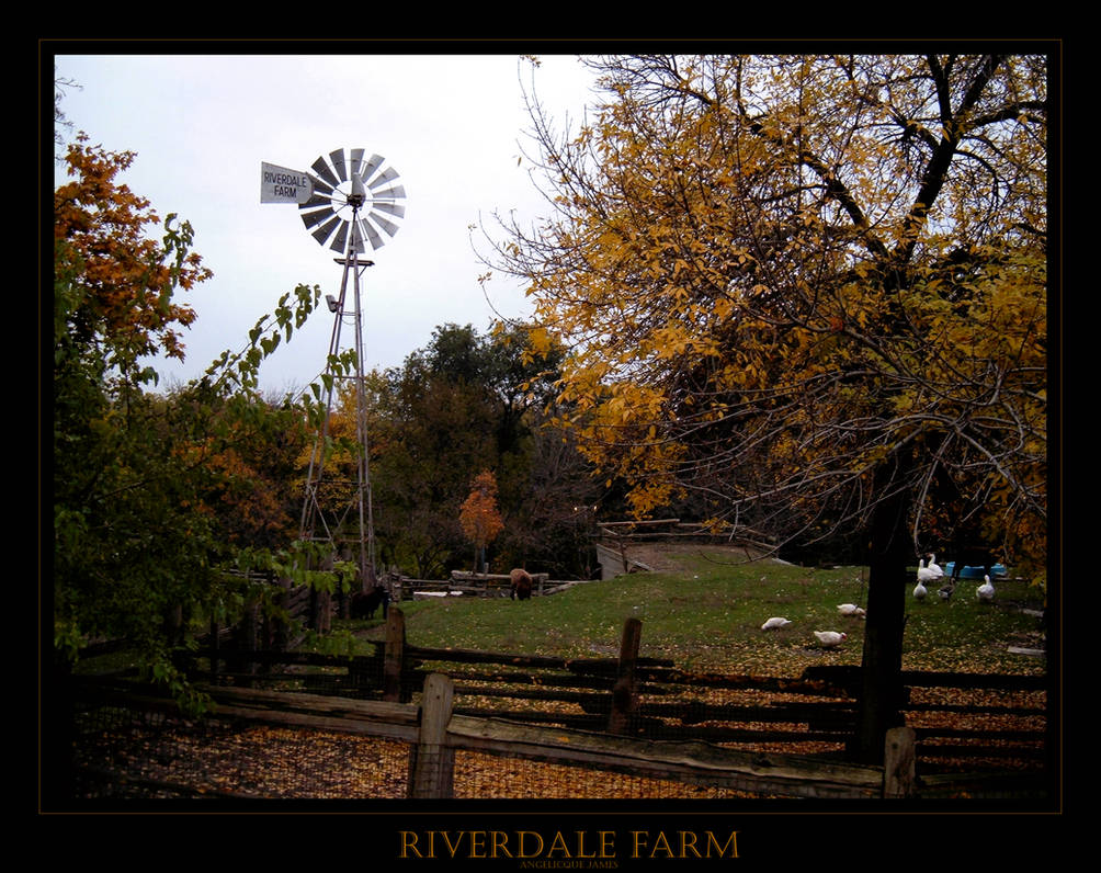 Riverdale Farm by angelicque