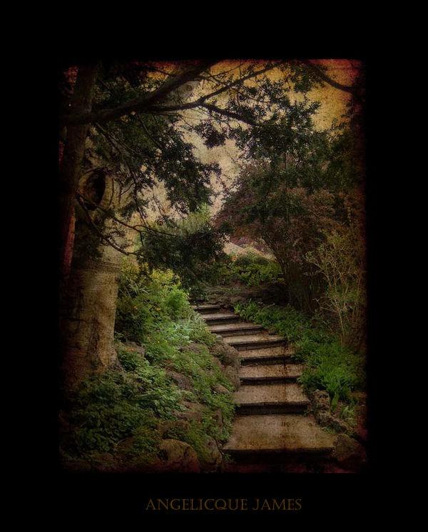 Decayed:Edward's Gardens XXIV
