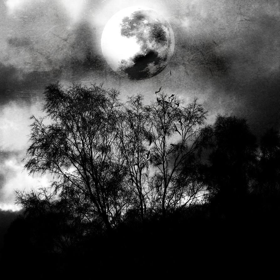 A Dark World by MeanDarkSmile