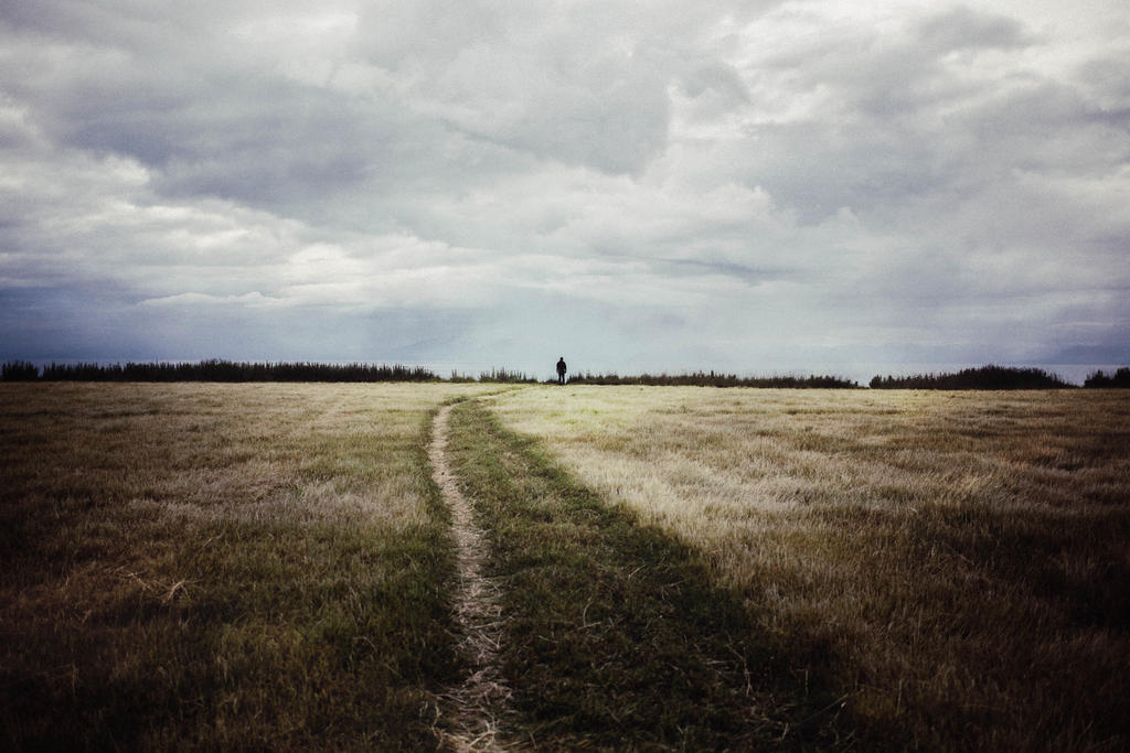 Trails Lead Here (94/365) by MeanDarkSmile