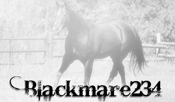 BlackMare234's Profile Picture