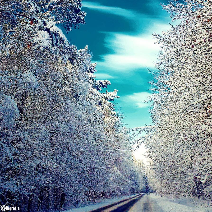 Winter Wondeland by poezja