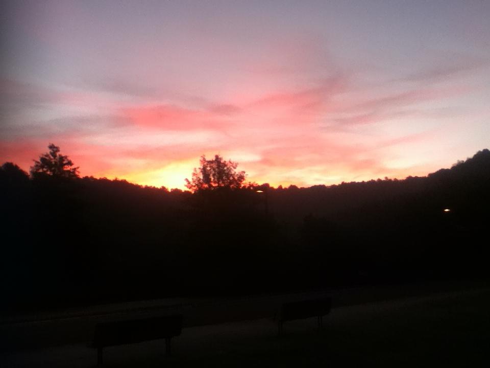 Sunrise by WildDeadlyNadder