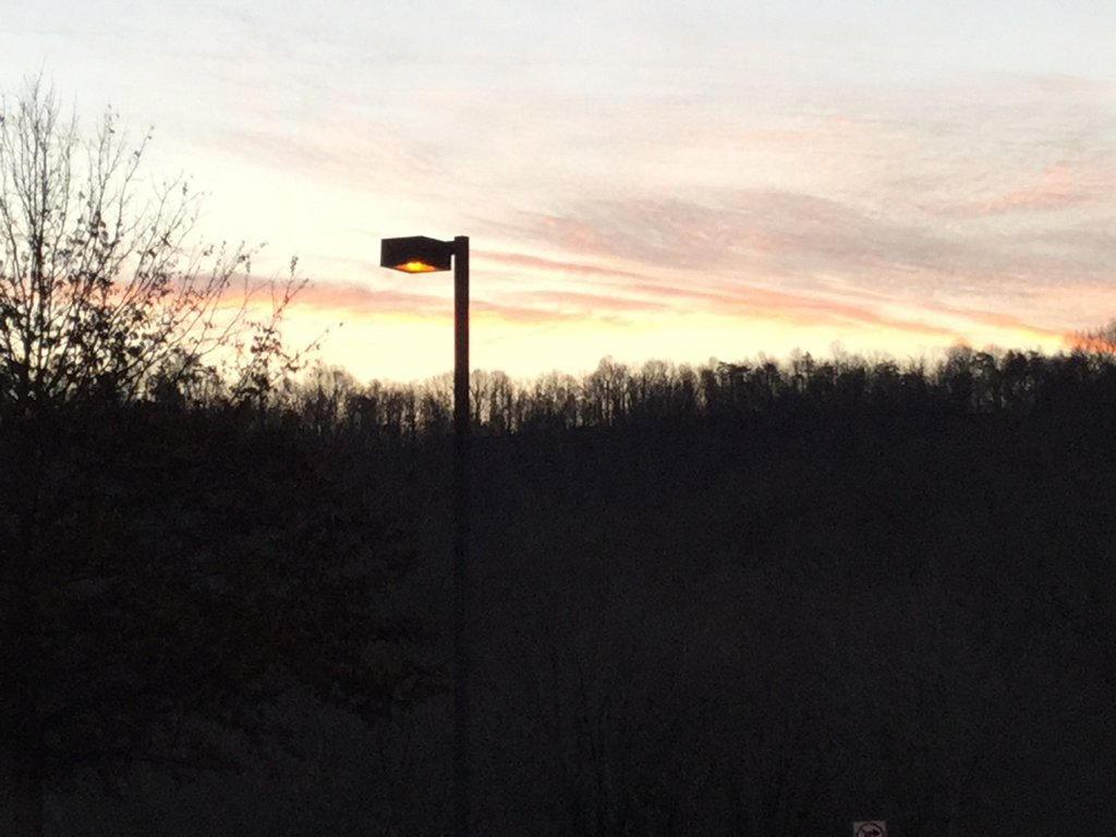 Sunrise 2 by WildDeadlyNadder