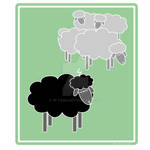 Baaaa...Black Sheep