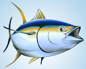 Yellow Fin Tuna 2