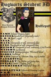 Teddy Lupin Hogwarts ID by HogwartsLover