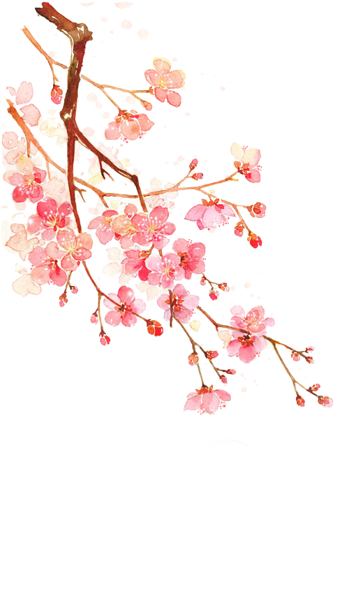 Cherry blossoms PNG #7 by AugT30 on DeviantArt
