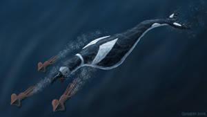 Hesperornid Cetus - Bird Whale