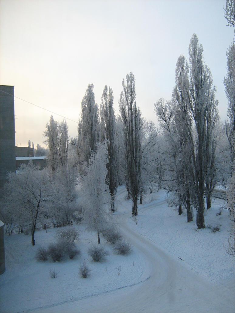 Kremenchug Winter wallpaper