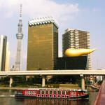 ..Poo Building and Sky Tree..