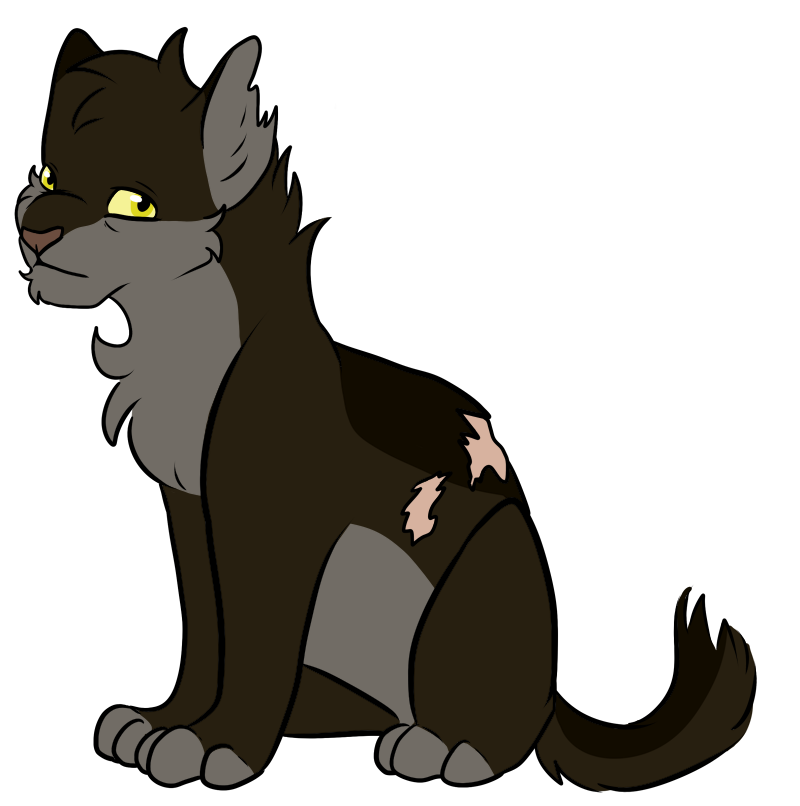Warrior Cats Halftail