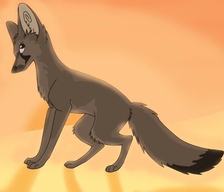 Bat eared fox by DisposableMutt