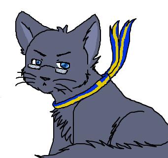 neko berwald by swedish cat 4 sale on deviantart