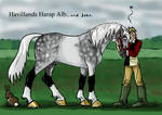 Havillands Harap Alb