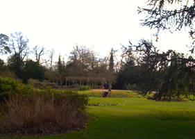 Hylands House Pleasure Gardens 1 by Louvan
