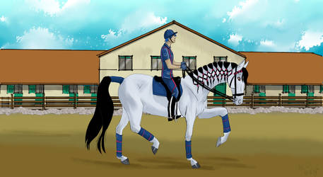 Dressage at a fancy stable