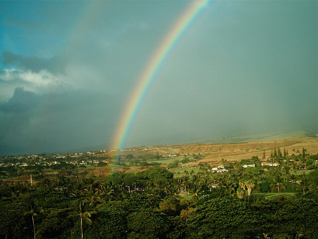The gallery for --> Real Rainbows In The Sky On A Sunny Day