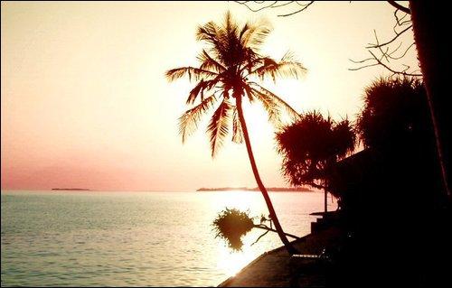 Weather Paradise Island Bahamas October