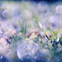 fragile by Laura1995