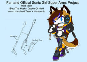 SonicSuperArmsProject Elect The Husky(DesignTest) by skyshek