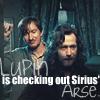 Lupin X Sirius by Mazza-909