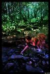 rainbow fairy wood