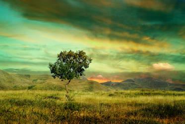green sky by Ka-Kind
