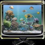 Dream Aquarium Ver II