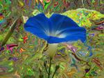 Trippy Morning Glory Flower