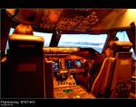 Flighttraining