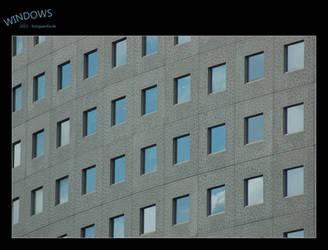 Windows by fotoguerilla