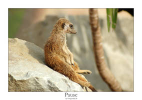 Pause by fotoguerilla