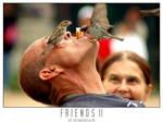 Friends II