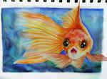 Goldfish - Journal Drawing
