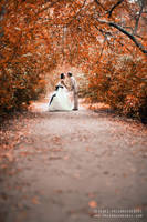Wedding v.118 by Serrgeon