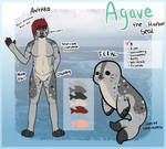..Agave Reference Sheet 2019..