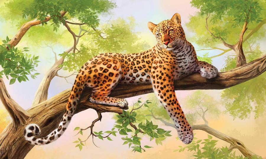 Leopard  Panther im Natur Lexikon