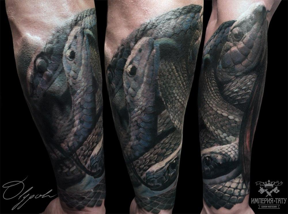 Snakes by Olggah