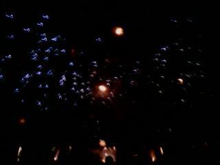 Fireworks 17 by championwinner