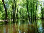 En canot en Ontario / Canoeing in Ontario