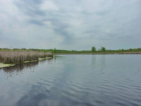 Cranberry Creek / Ruisseau aux Canneberges