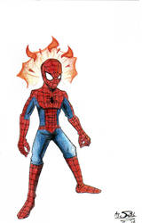 Superfly Spidey-Guy